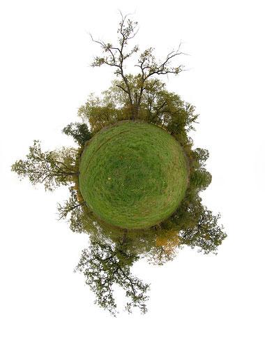 سیاره کوچکی از چوب